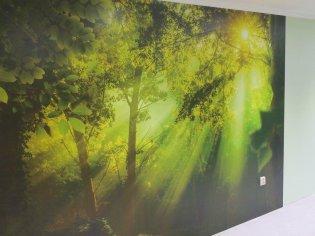 Maľovanie priestorov + lepenie fototapiet