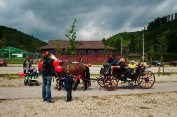 jazda na koníkoch a na koči